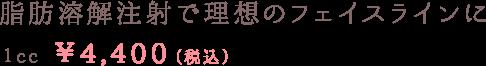 脂肪溶解注射で理想のフェイスラインに 1cc¥4,400~(税込)